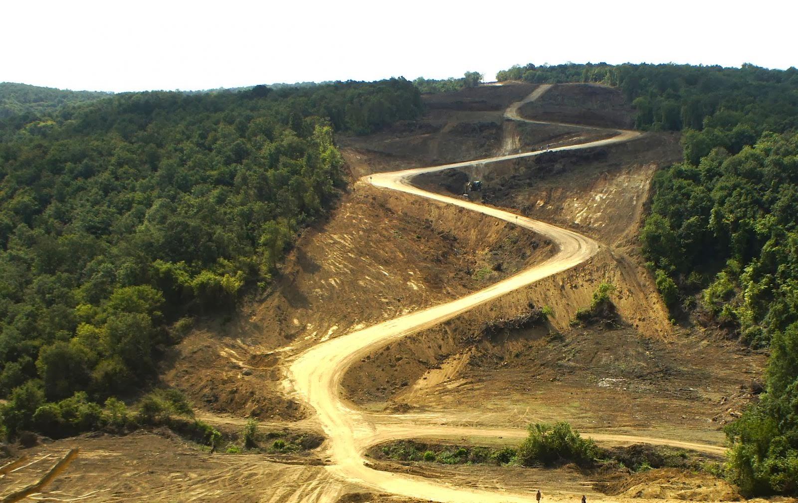 istanbul ormanları